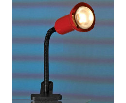 Настольная лампа офисная Lussole Warshawa LST-4534-01