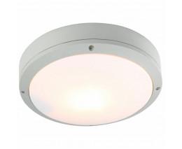 Накладной светильник Arte Lamp City A8154PF-2GY