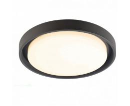 Накладной светильник Deko-Light Ascella 348067