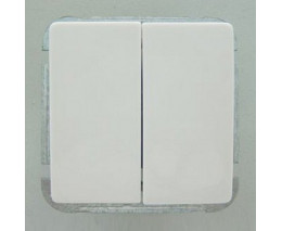 Выключатель двухклавишный без рамки Imex 1122L 1122L-S110