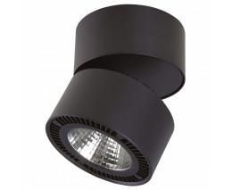 Светильник на штанге Lightstar Forte Muro LED 213837