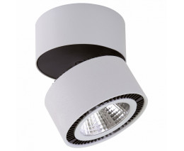 Светильник на штанге Lightstar Forte Muro LED 213839